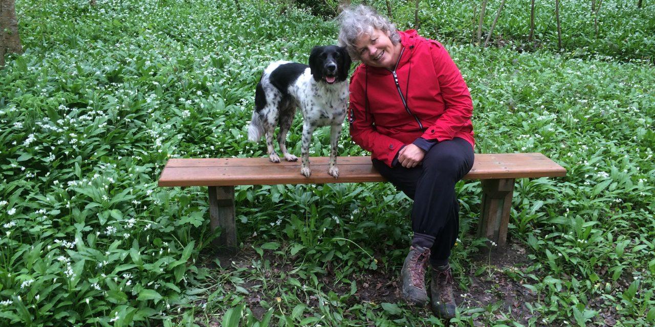 De liefde voor een hond: Over Jitte, Molly en Olle