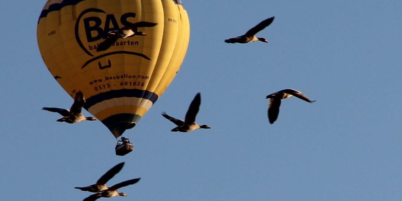 In luchtballon beleef je droom écht