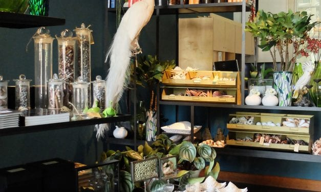 Vijf museumwinkels voor een feestelijk cadeau