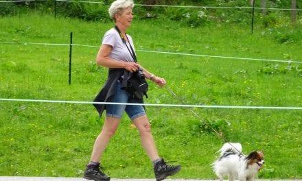 In Beweging: 2x per dag loopt Netty kilometers met haar hondje Bella