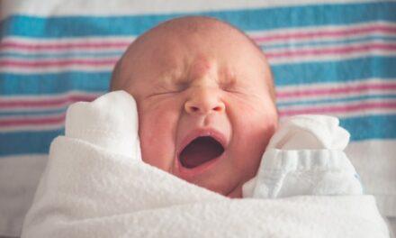 Thuisbevalling in het Openluchtmuseum: 13 procent bevalt buiten ziekenhuis