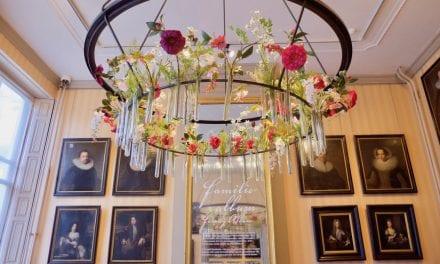Vernieuwing in Cromhouthuis: Merian's bloemen en planten uit de kast