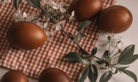 Eén chocolade eitje per dag, puur genieten