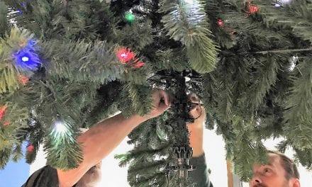 Vrijwilligerswerk via Nederland Cares: glimlach voor een kerstboom
