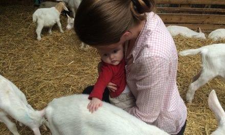 Naar kinderboerderij! Goed voornemen verdrijft depressieve bui