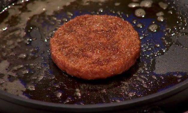 Nepvlees tijdens Vegan Challenge om van te gruwen!