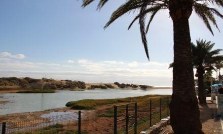 Kees' Keuze: Gran Canaria  voor zomerse blik in de winter