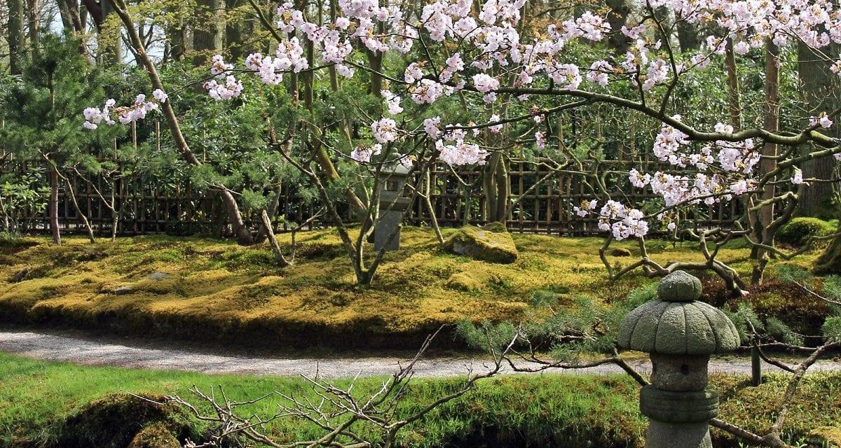 Bezoek stukje Japan in Nederland…