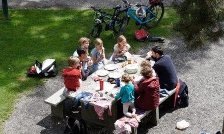 Het is zomertijd, tijd voor een picknick!
