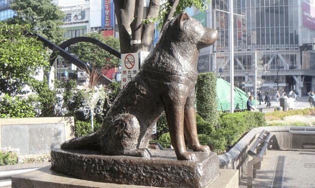 Standbeeld voor Wiette's grote kerstkijken 2019