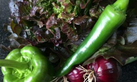 Goedkope groente wordt -uiteindelijk- duur betaald