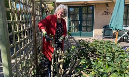 Tuinieren met Wiette: Tegel eruit, groen erin!