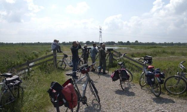 'Onbekend' stukje Gooi voor heerlijk fietsrondje