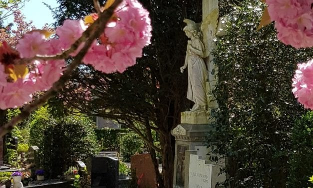Onder bekoring van het kerkhof