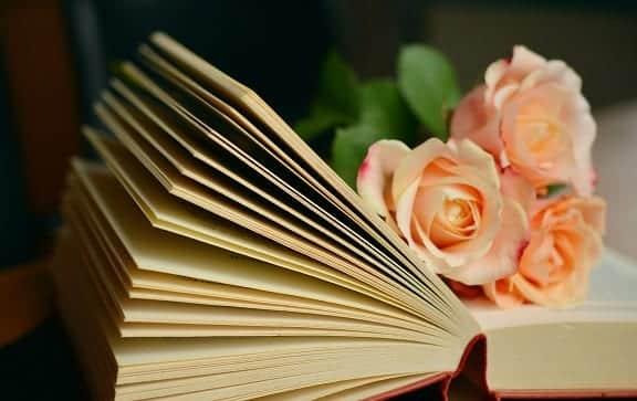Laatste deel van 'De zeven zussen' in een boeketje boeken